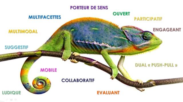 "demain-la-formation-""caméléon"""